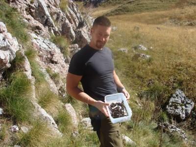 Benjo sa bebama šargana - V. ursinii monitoring