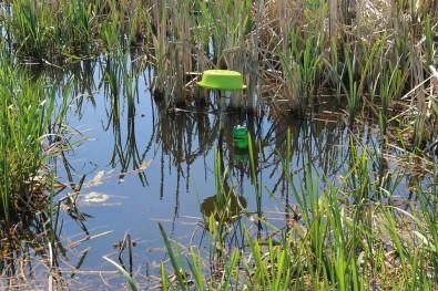 Postavka data logger-a/ uređaj koji bilježi faktore staništa (temperaturu zraka, vode, vlažnost i dr.)