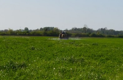 Effects of pesticides on farmland (locality: Gromiželj)