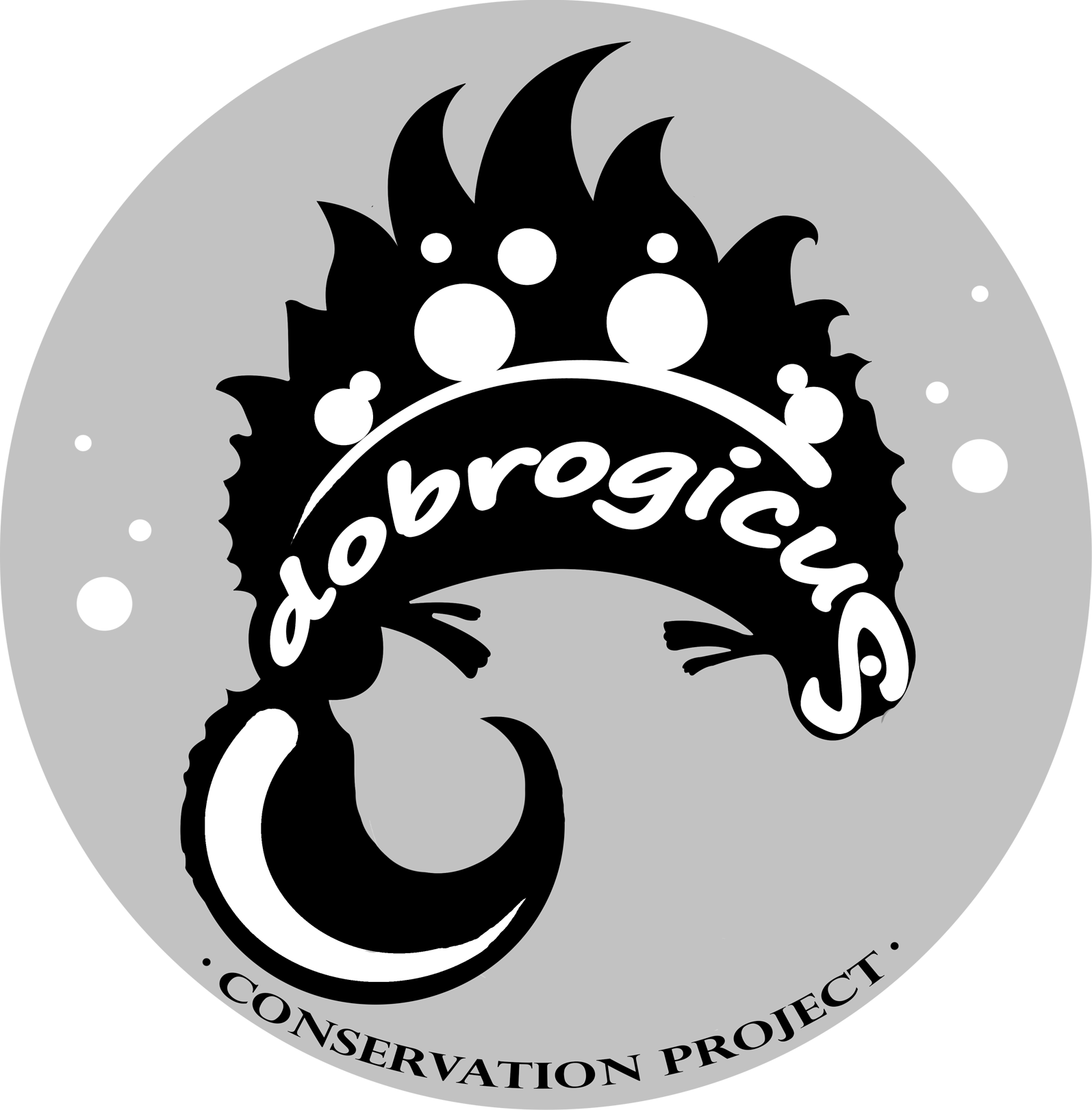 logo projekta / logo of the project